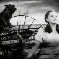 The Rise and Fall of Judy Garland